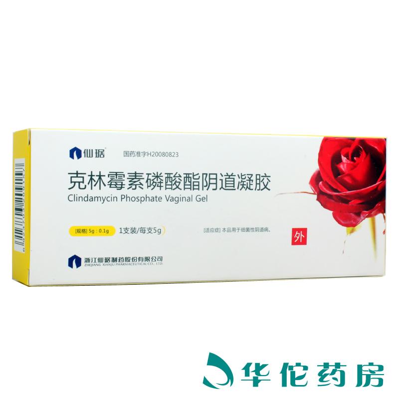克林霉素磷酸酯陰道凝膠