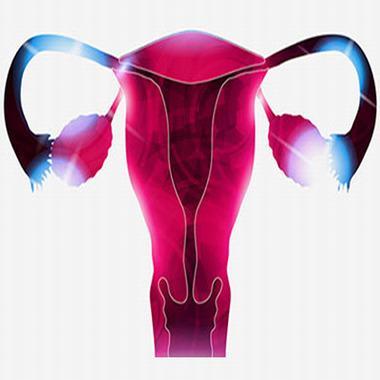 引發輸卵管堵塞的真正原因