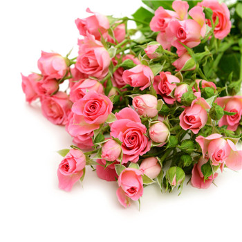 玫瑰花茶的美容养颜养生功效