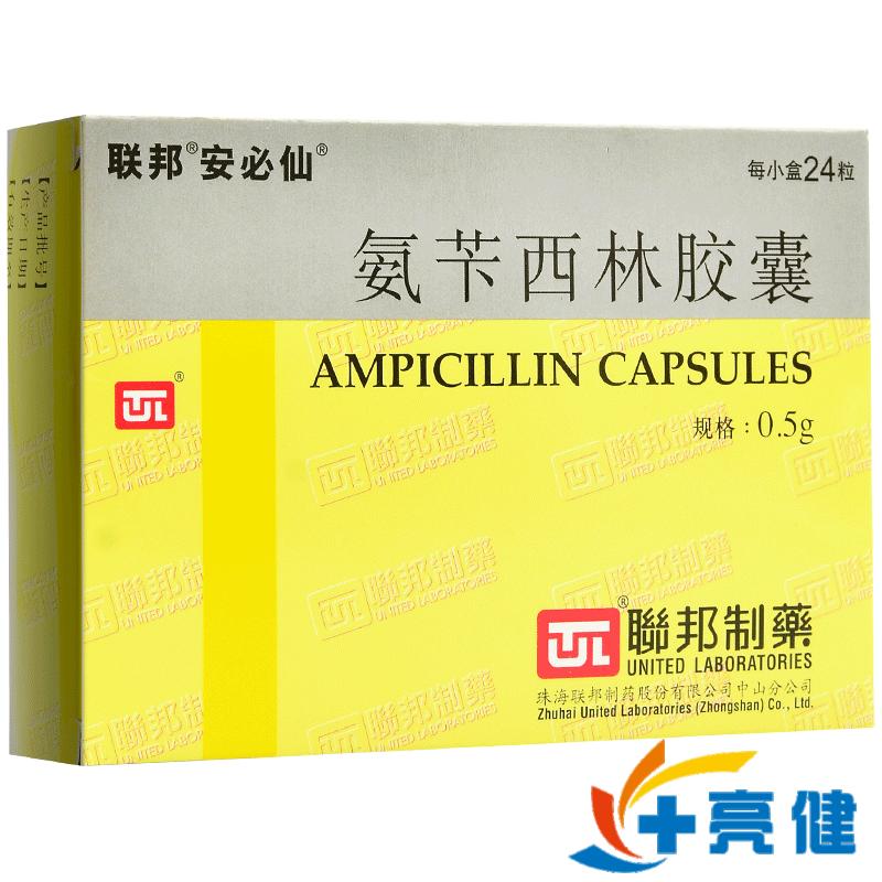 安必仙 氨苄西林胶囊 0.25g*24粒/盒珠海联邦制药股份有限公