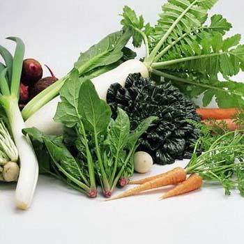 自闭吃什么 蔬菜是首选