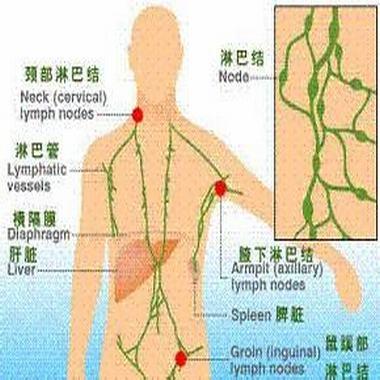 颈部淋巴结肿大的症状是什么呢
